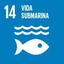 S_SDG goals_icons-individual-rgb-14